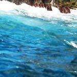 御蔵島の海の色
