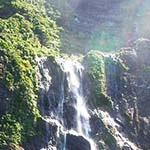 御蔵島の風景